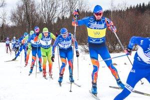 Vm ski cup